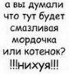 Антон Xxx, 22 ноября 1987, Луганск, id31284598