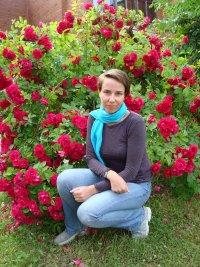 Елена Доброва, 13 июня , Санкт-Петербург, id41464688